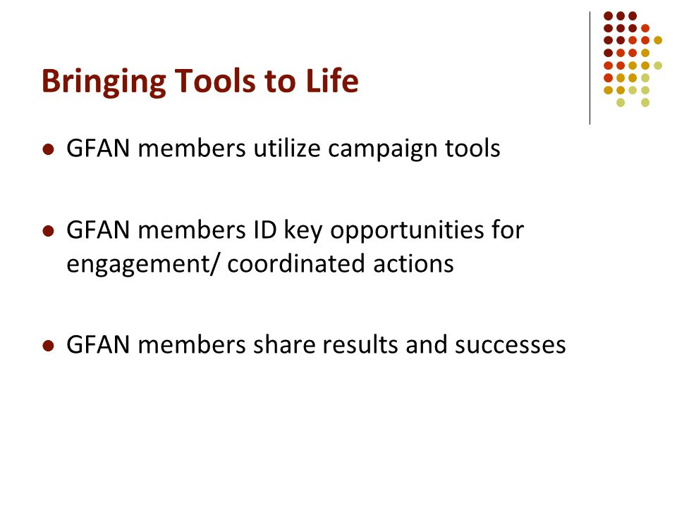 Bringing Tools to Life GFAN members utilize campaign tools GFAN members ID key opportunities for engagement/ coordinated actions GFAN members share results and successes