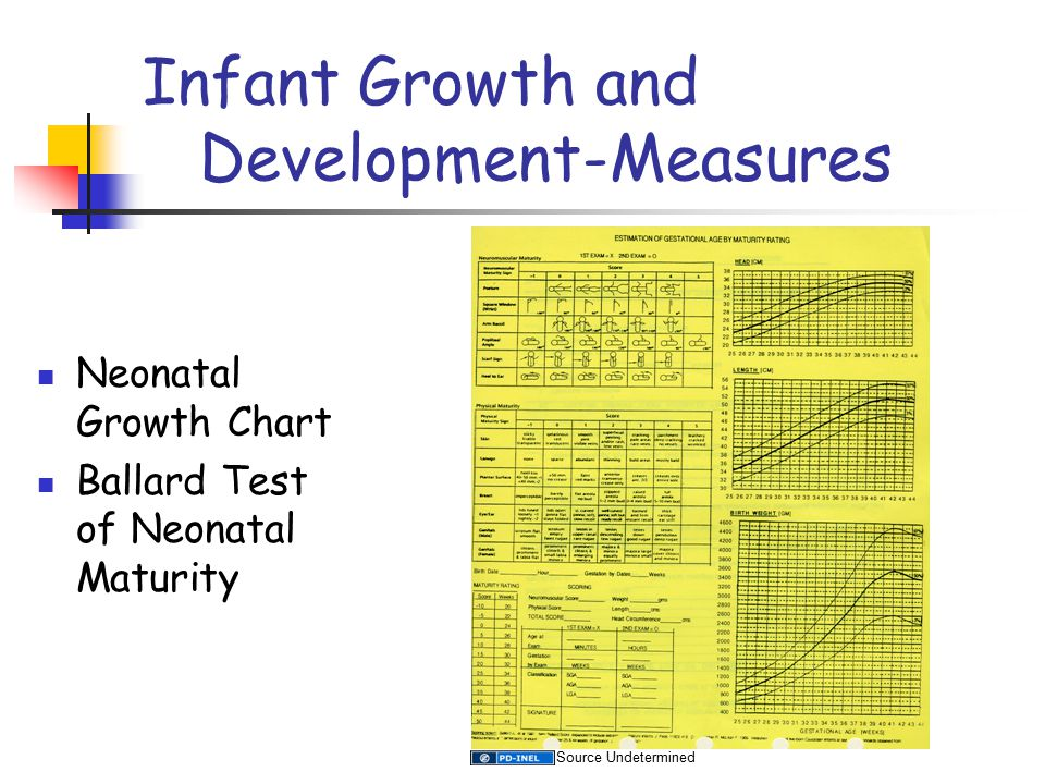 Infant Growth and Development-Measures Neonatal Growth Chart Ballard Test of Neonatal Maturity Source Undetermined