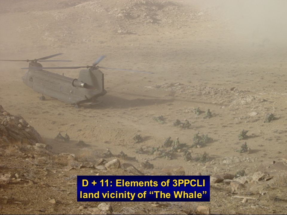 D + 11: Elements of 3PPCLI land vicinity of The Whale