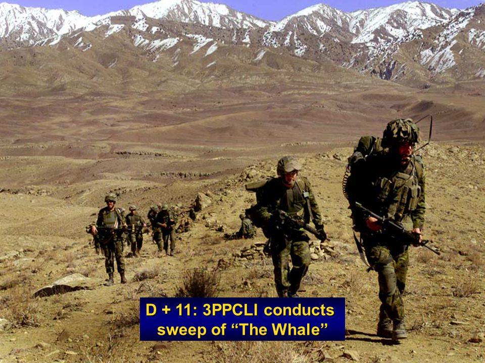 D + 11: 3PPCLI conducts sweep of The Whale