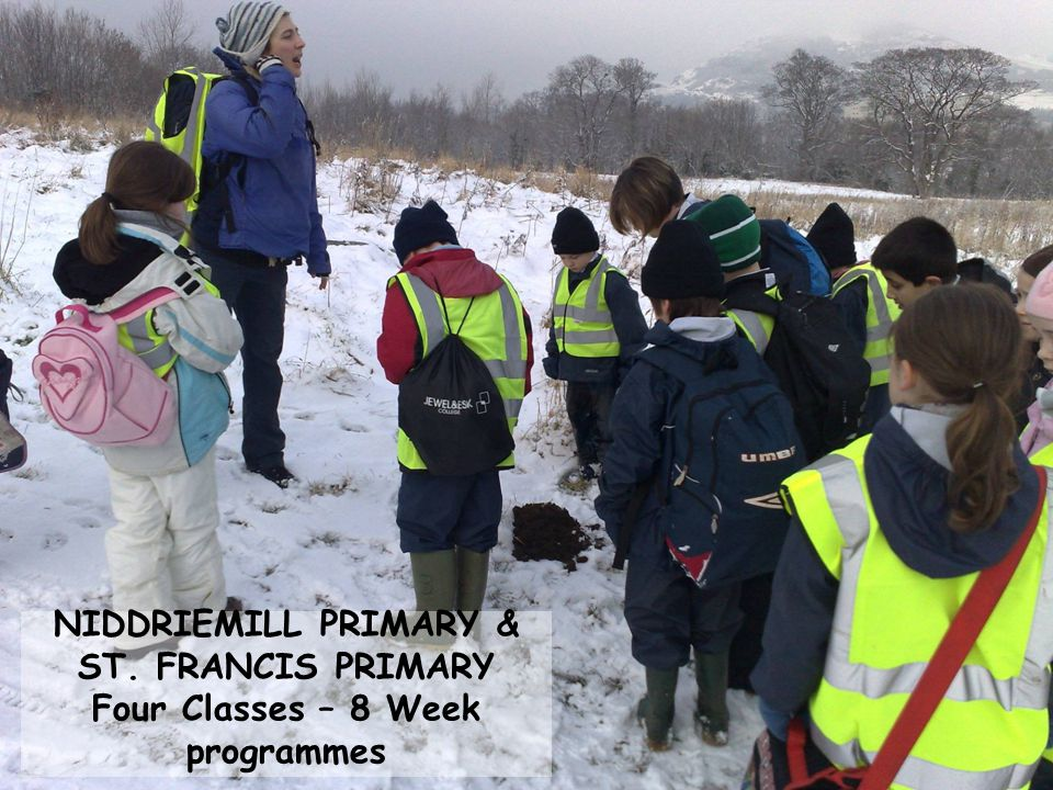 NIDDRIEMILL PRIMARY & ST. FRANCIS PRIMARY Four Classes – 8 Week programmes