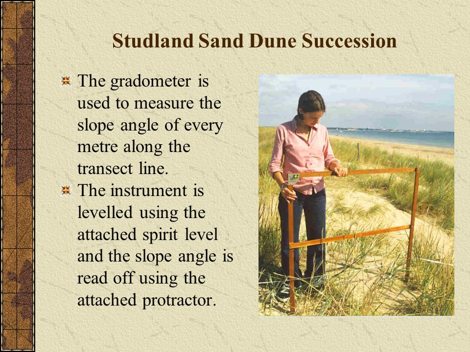 Studland Sand Dune Succession The gradometer is used to measure the slope angle of every metre along the transect line.