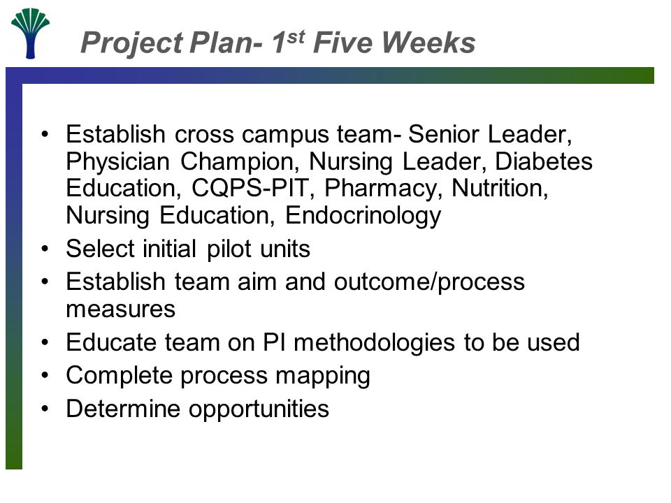 Project Plan- 1 st Five Weeks Establish cross campus team- Senior Leader, Physician Champion, Nursing Leader, Diabetes Education, CQPS-PIT, Pharmacy, Nutrition, Nursing Education, Endocrinology Select initial pilot units Establish team aim and outcome/process measures Educate team on PI methodologies to be used Complete process mapping Determine opportunities