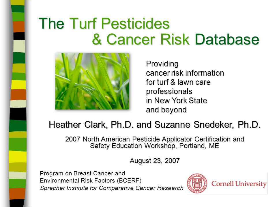 The Turf Pesticides & Cancer Risk Database Program on Breast Cancer and Environmental Risk Factors (BCERF) Sprecher Institute for Comparative Cancer Research Heather Clark, Ph.D.