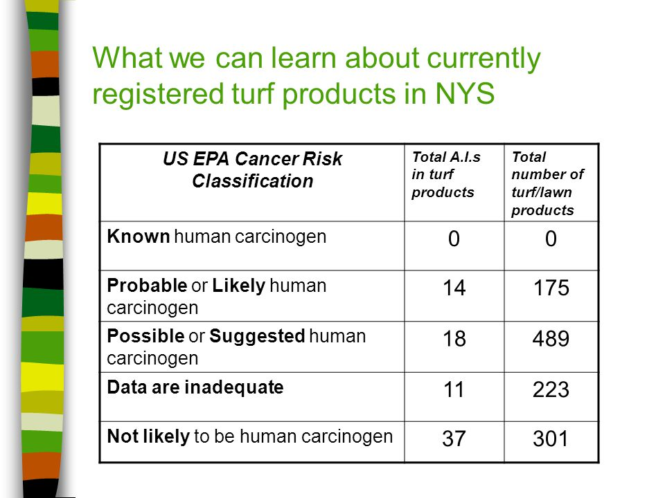 What we can learn about currently registered turf products in NYS US EPA Cancer Risk Classification Total A.I.s in turf products Total number of turf/lawn products Known human carcinogen 00 Probable or Likely human carcinogen 14175 Possible or Suggested human carcinogen 18489 Data are inadequate 11223 Not likely to be human carcinogen 37301