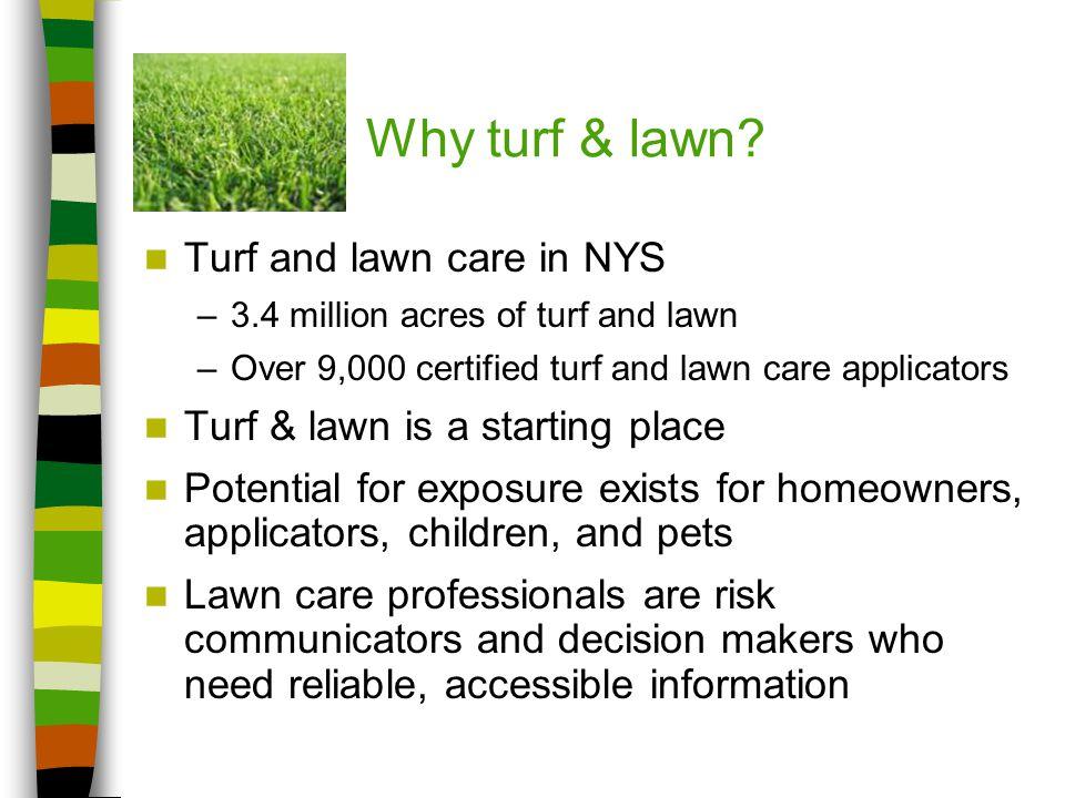 Why turf & lawn.