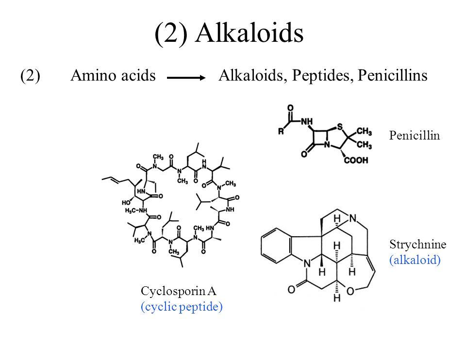 (2) Amino acids Alkaloids, Peptides, Penicillins Penicillin Cyclosporin A (cyclic peptide) Strychnine (alkaloid) (2) Alkaloids
