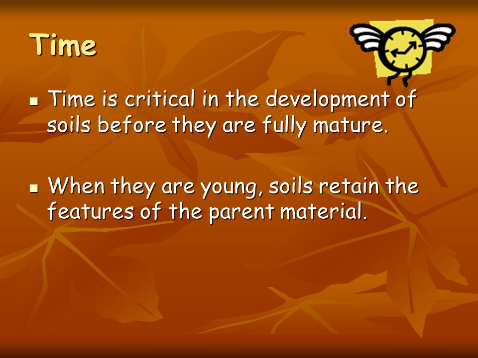 Relief (3) Relief and aspect can also modify the effect of climate on the soil. Relief and aspect can also modify the effect of climate on the soil. S