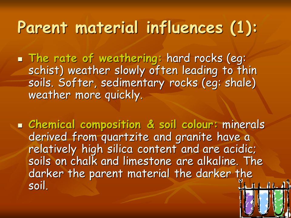Parent material Parent material is especially significant in the early development of soil and its mineral content. It can vary from solid bedrock to