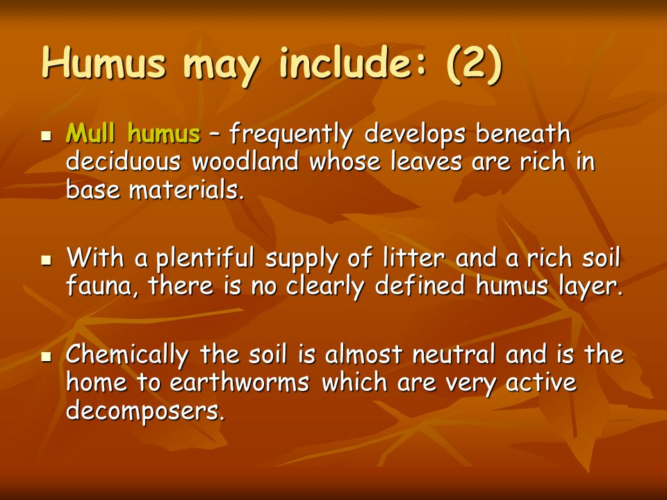 Humus may include: (1) Mor humus - which mainly develops beneath coniferous forest or heather moorland is normally associated with a cooler, wet climate and acidic parent material.