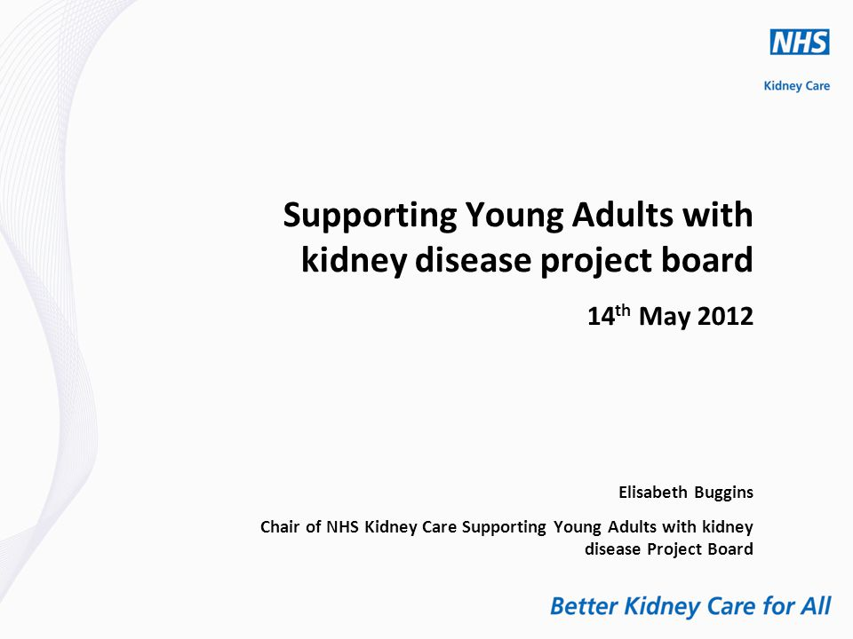 Supporting Young Adults with kidney disease project board 14 th May 2012 Elisabeth Buggins Chair of NHS Kidney Care Supporting Young Adults with kidney disease Project Board