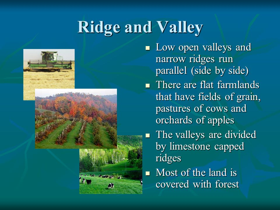 Ridge and Valley Low open valleys and narrow ridges run parallel (side by side) Low open valleys and narrow ridges run parallel (side by side) There a