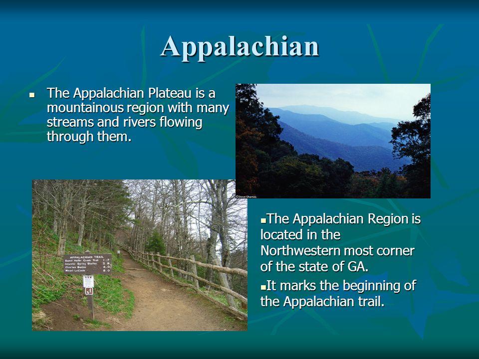 Appalachian The Appalachian Plateau is a mountainous region with many streams and rivers flowing through them. The Appalachian Plateau is a mountainou