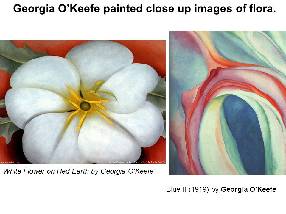 Georgia O'Keefe painted close up images of flora.