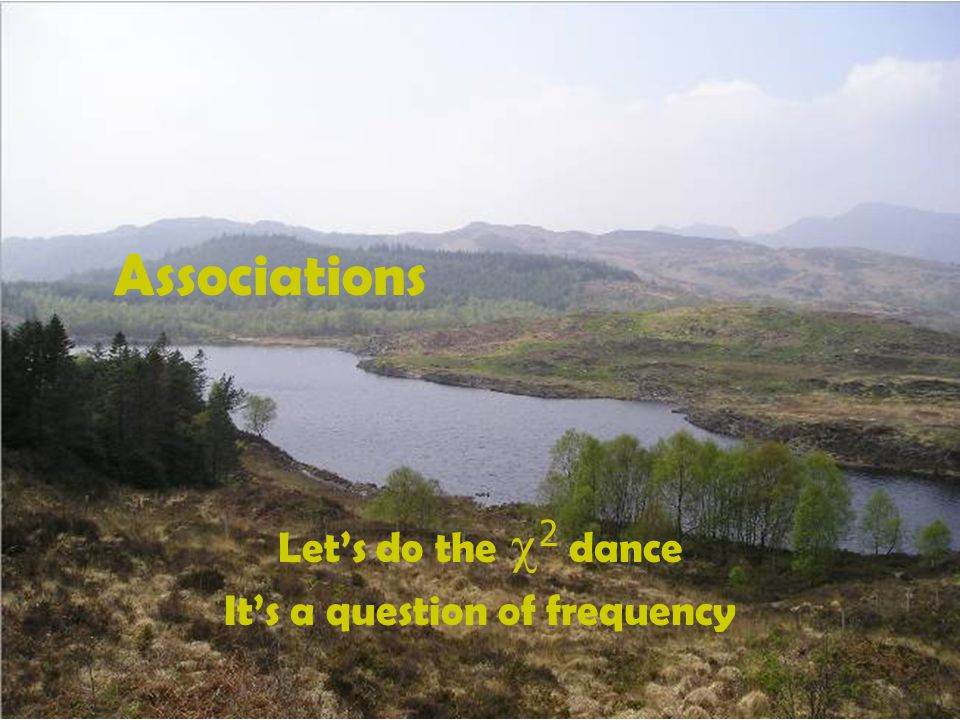 Associations Let's do the  2  dance It's a question of frequency