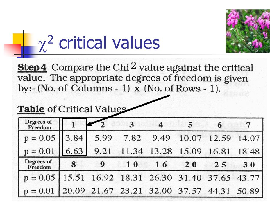  2 critical values