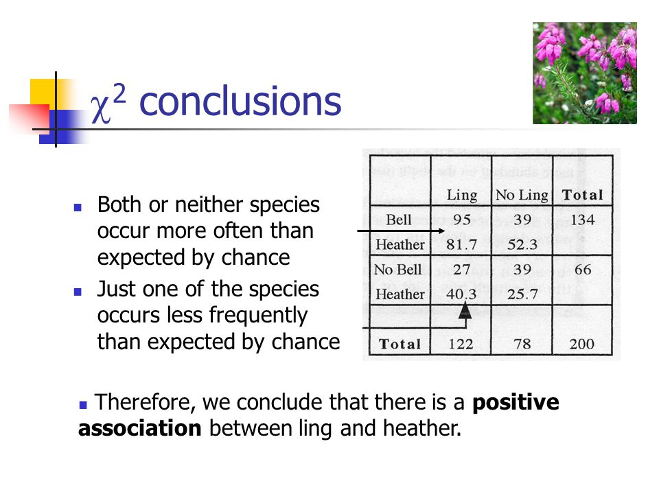  2 conclusions Both or neither species occur more often than expected by chance Just one of the species occurs less frequently than expected by chance Therefore, we conclude that there is a positive association between ling and heather.