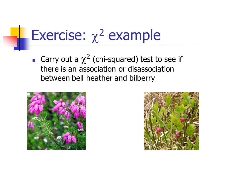 Exercise:  2 example Carry out a  2 (chi-squared) test to see if there is an association or disassociation between bell heather and bilberry