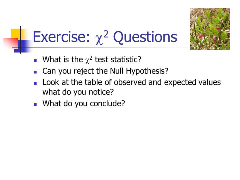 Exercise:  2 Questions What is the  2 test statistic? Can you reject the Null Hypothesis? Look at the table of observed and expected values – what d