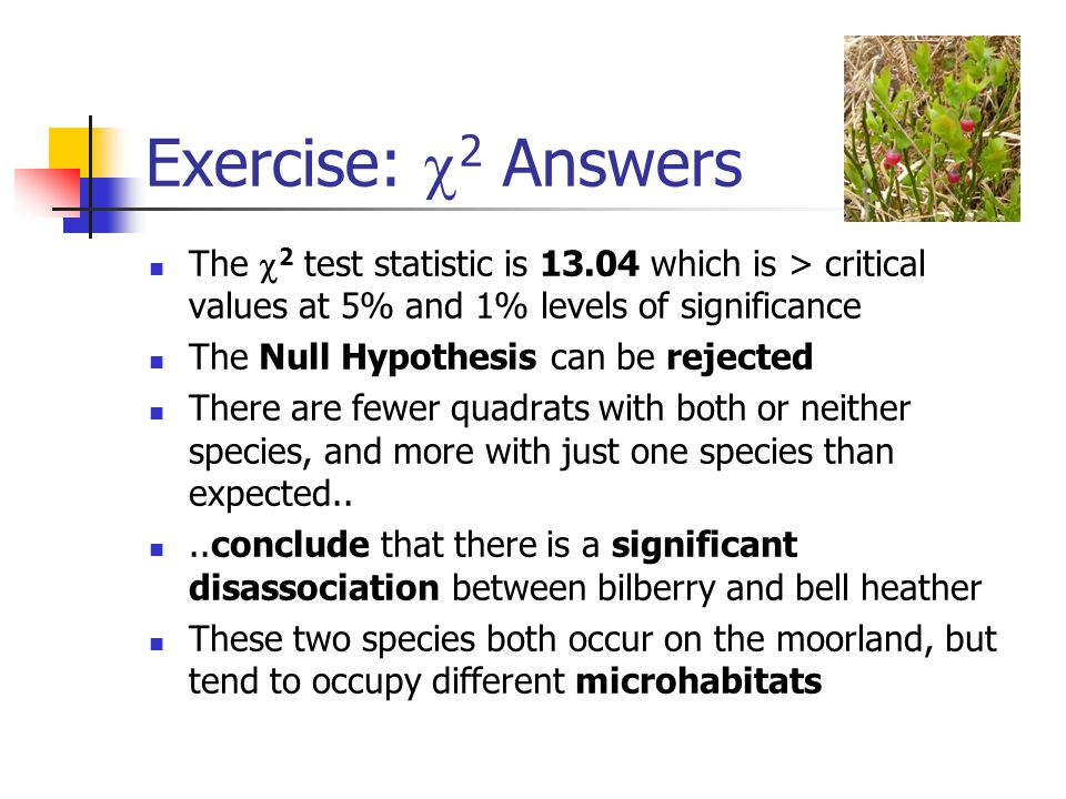 Exercise:  2 Answers The  2 test statistic is 13.04 which is > critical values at 5% and 1% levels of significance The Null Hypothesis can be reject