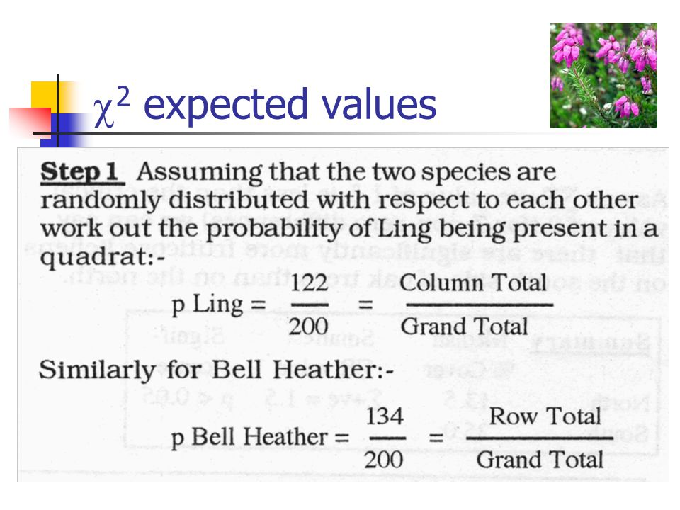  2 expected values