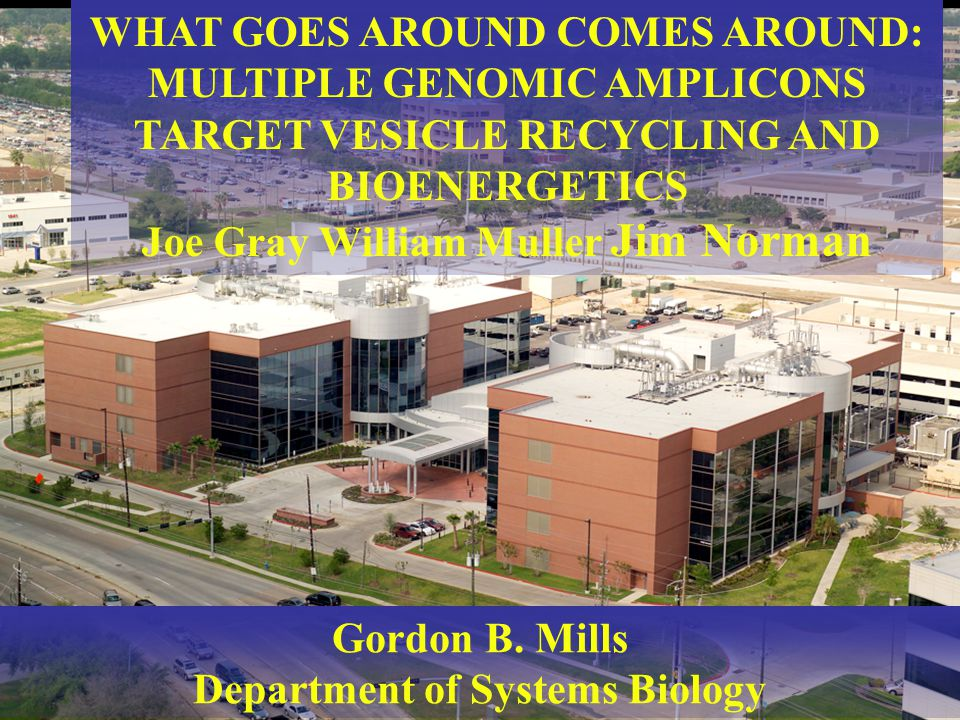 Gordon B. Mills Department of Systems Biology WHAT GOES AROUND COMES AROUND: MULTIPLE GENOMIC AMPLICONS TARGET VESICLE RECYCLING AND BIOENERGETICS Joe