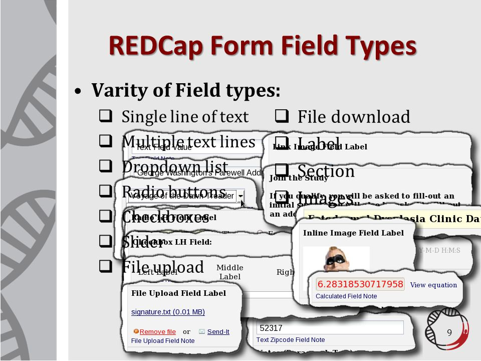 REDCap Data Backups Data is replicated every 15 minutes to remote data center Over 100 versions of data are maintained Reliable and tested disaster recovery strategy 20
