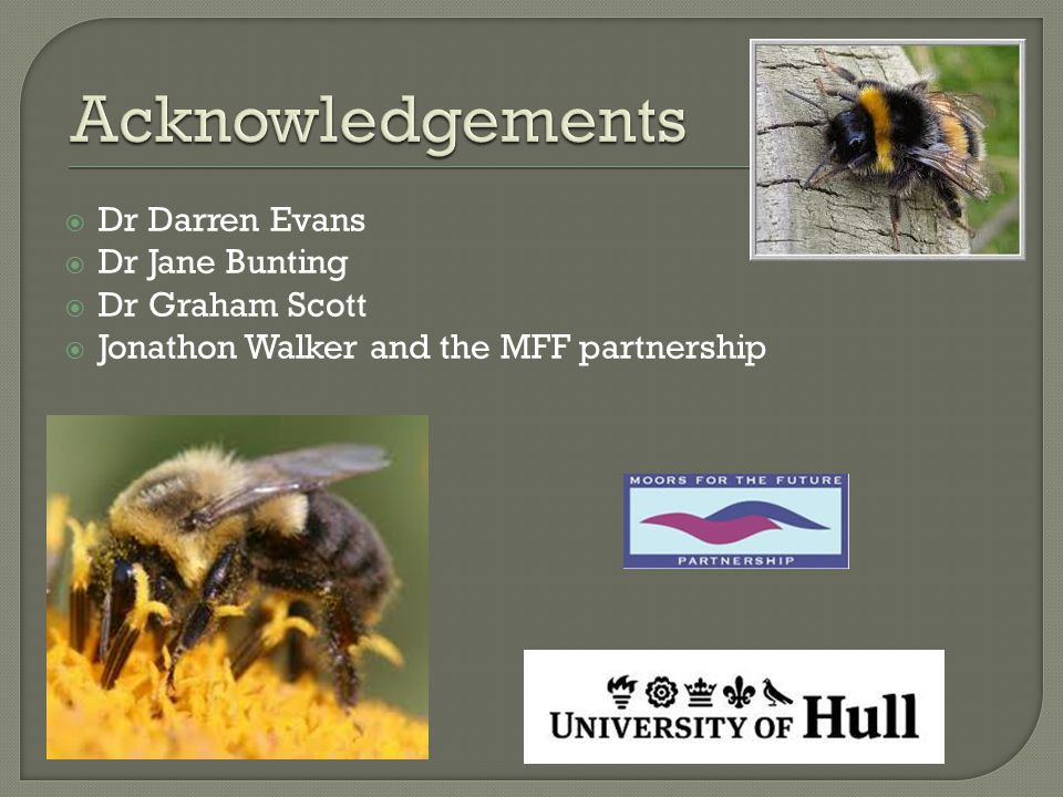  Dr Darren Evans  Dr Jane Bunting  Dr Graham Scott  Jonathon Walker and the MFF partnership