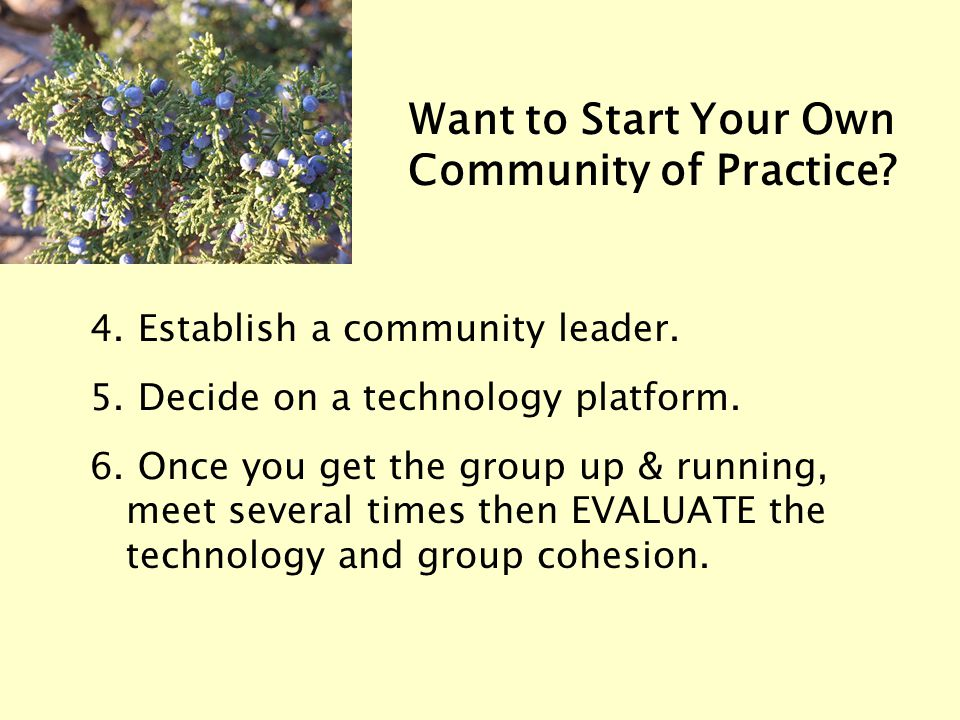 4. Establish a community leader. 5. Decide on a technology platform. 6. Once you get the group up & running, meet several times then EVALUATE the tech