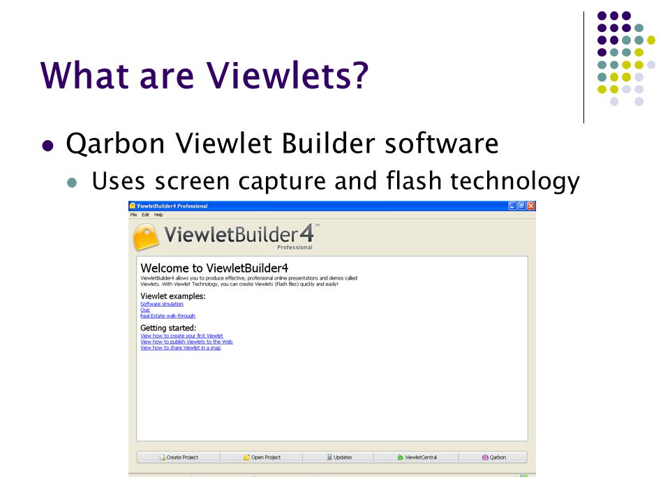 What are Viewlets? Qarbon Viewlet Builder software Uses screen capture and flash technology