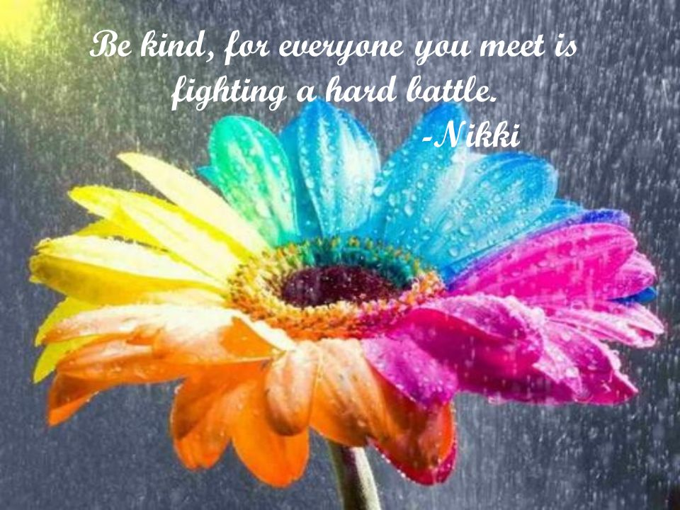 Be kind, for everyone you meet is fighting a hard battle. -Nikki