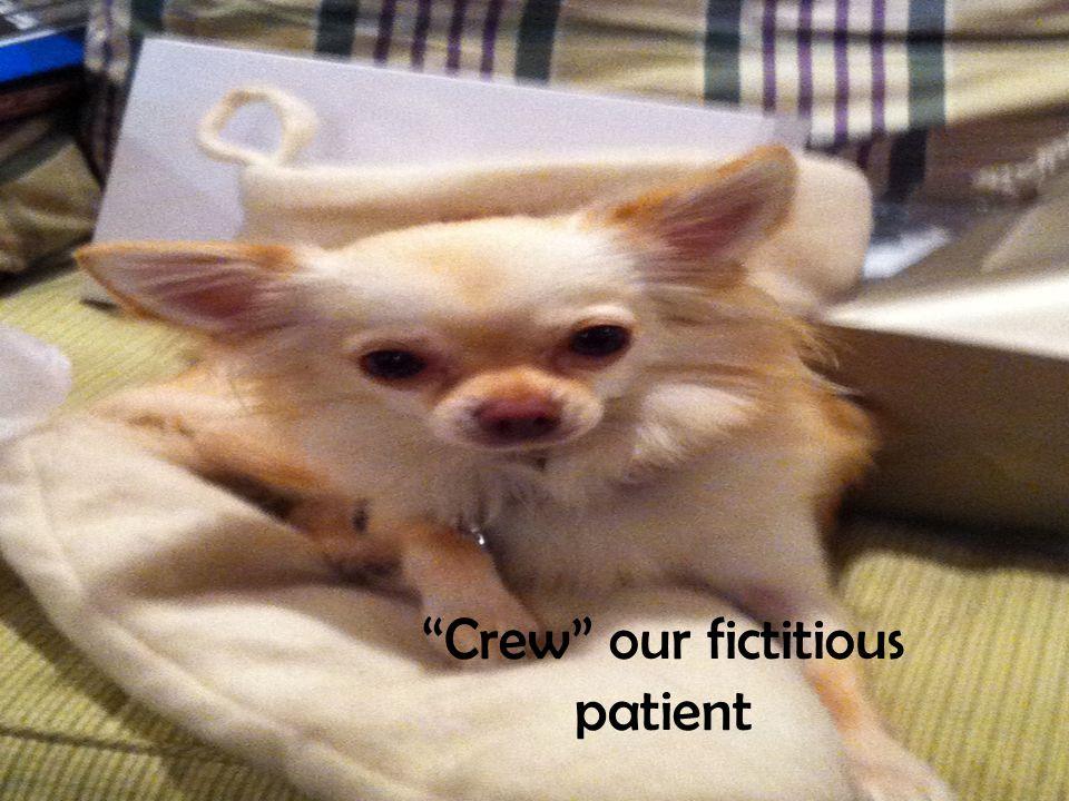 """""""Crew"""" our fictitious patient"""