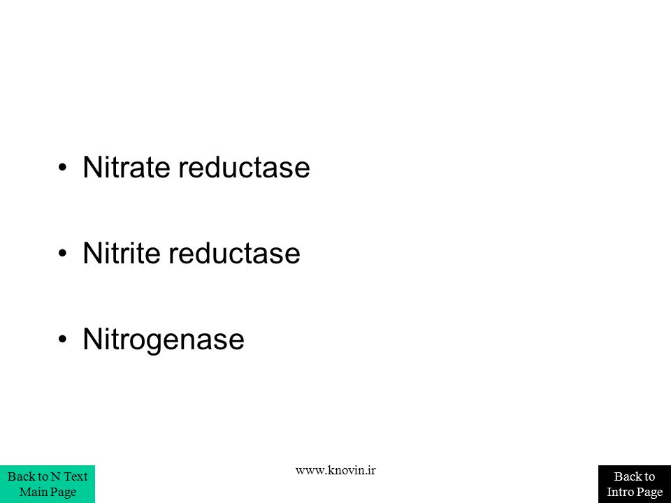Nitrate reductase Nitrite reductase Nitrogenase Back to Intro Page Back to N Text Main Page www.knovin.ir