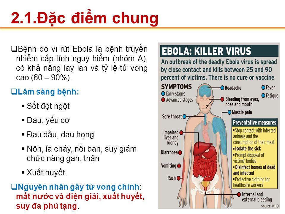 """bệnh do virut Ebola Sốt xuất huyết Ebola """"Ebola haemorrhagic fever"""".Bệnh do vi rút Ê-bô-la """"Ebola virus disease"""". Q ua niêm mạc, bạch cầu đơ n nhân, đ"""