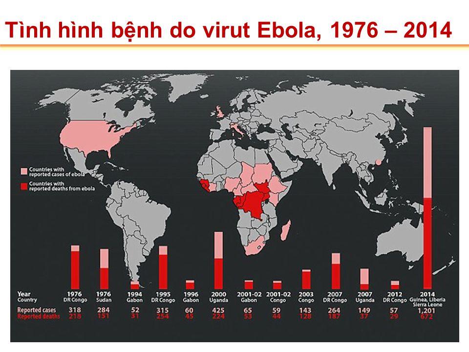 Yambuku RDC 1976 LÀNG YAMBUKU, CỘNG HÒA DÂN CHỦ CÔNG GÔ, 1976, CẠNH CON SÔNG EBOLA NƠI KHỞI NGUỒN CỦA DỊCH BỆNH EBOLA Bệnh do virut Ebola