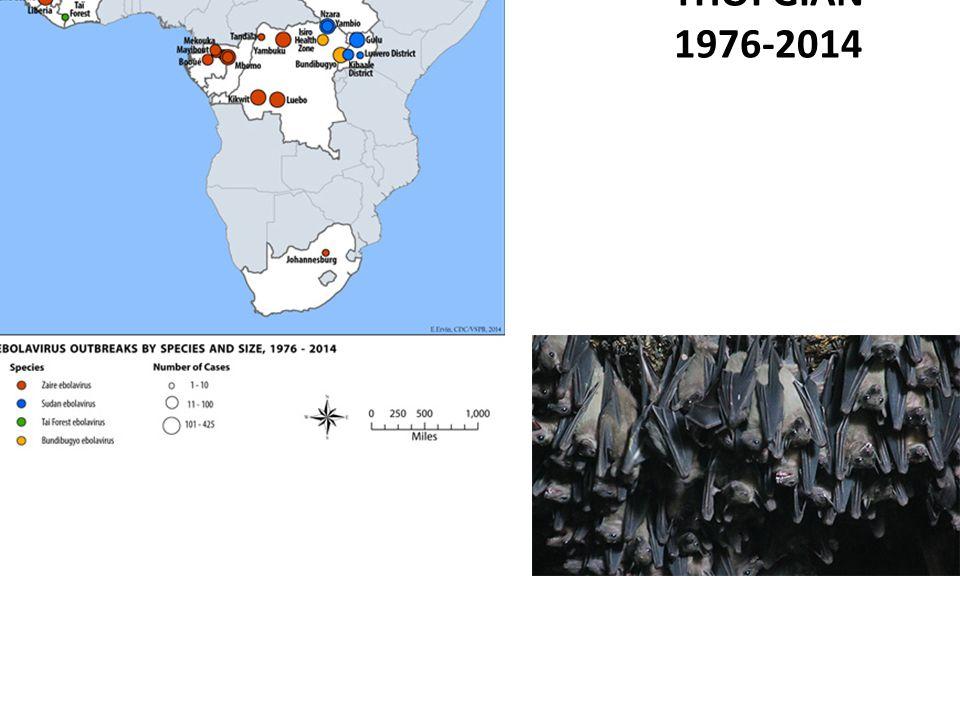 Tình hình bệnh do virut Ebola, 1976 – 2014