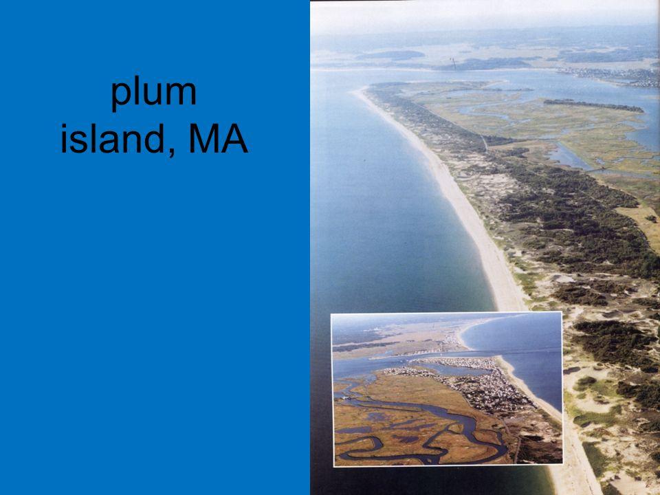 plum island, MA