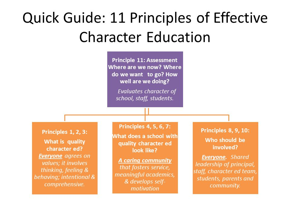 Quick Guide: 11 Principles of Effective Character Education Principle 11: Assessment Where are we now.