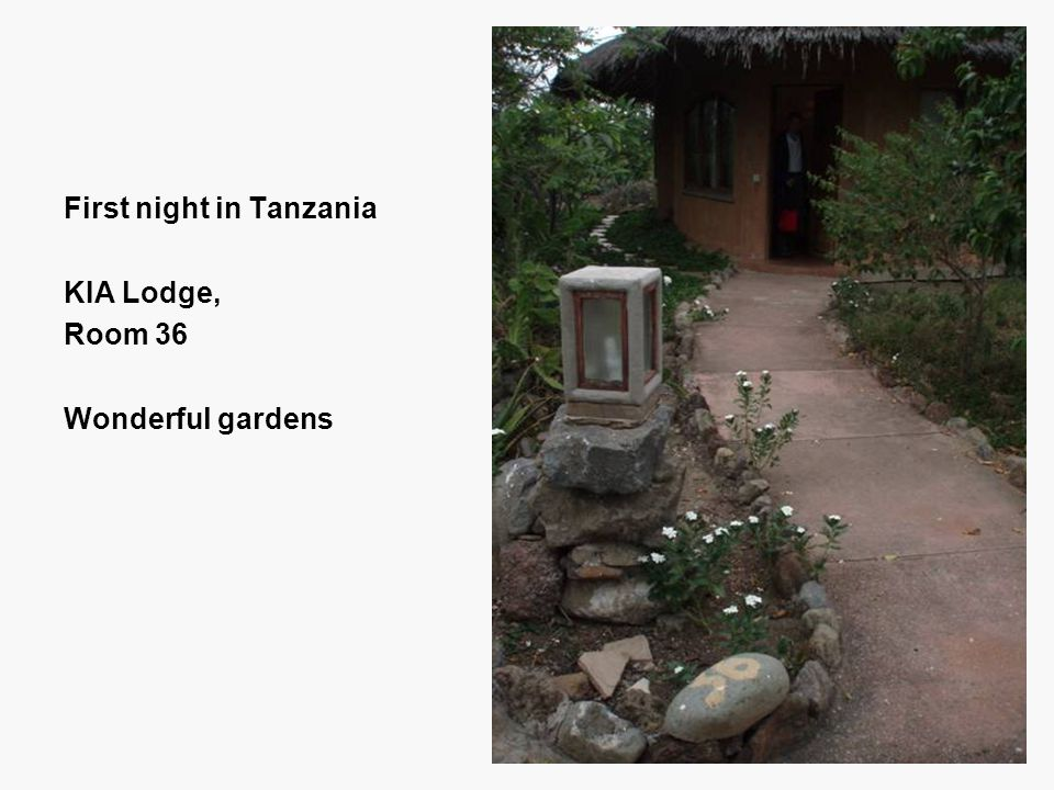 First night in Tanzania KIA Lodge, Room 36 Wonderful gardens