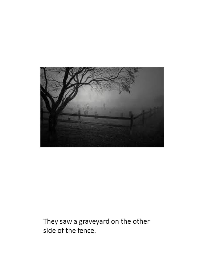They saw a graveyard on the other side of the fence.