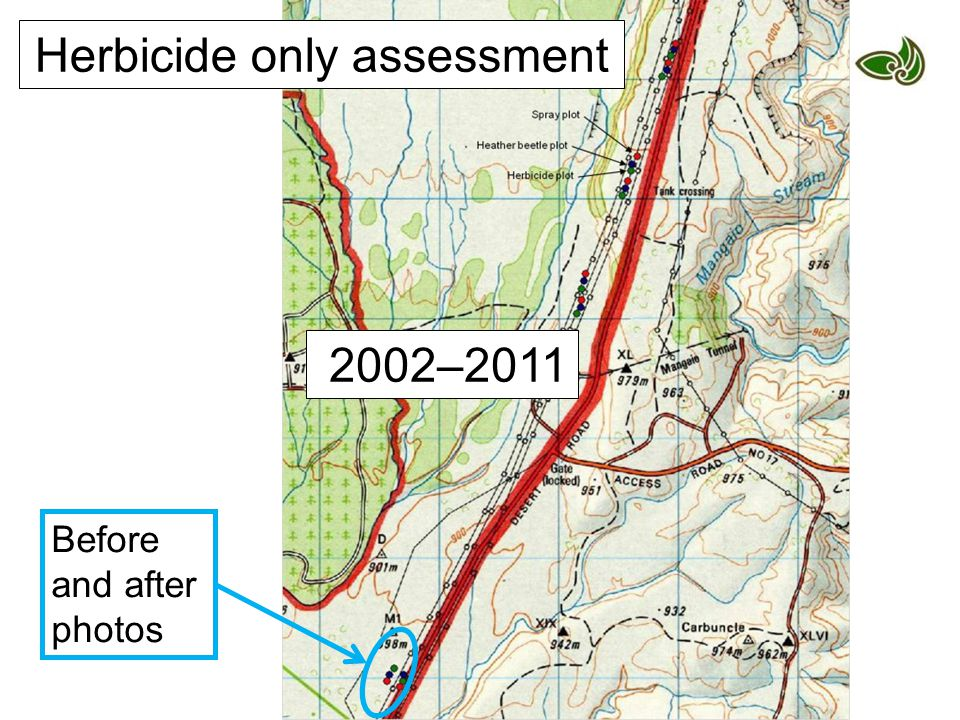 2002–2011 Herbicide only assessment Before and after photos