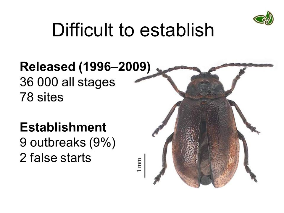 Difficult to establish Released (1996–2009) 36 000 all stages 78 sites Establishment 9 outbreaks (9%) 2 false starts