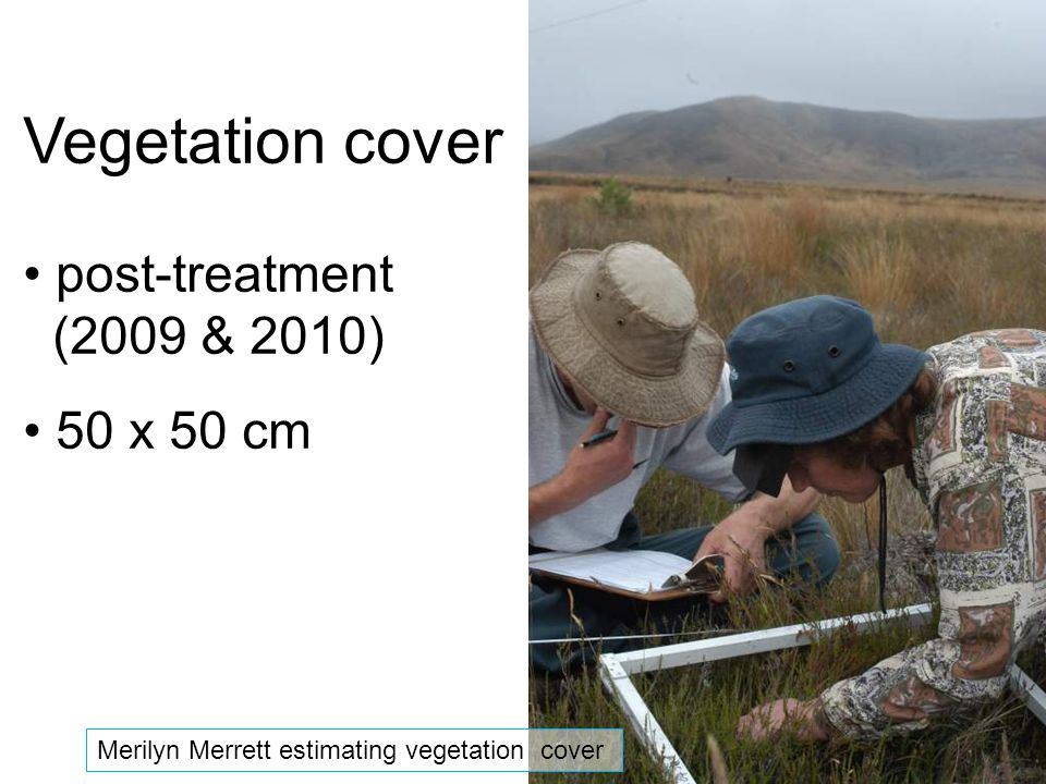 Vegetation cover post-treatment (2009 & 2010) 50 x 50 cm Merilyn Merrett estimating vegetation cover