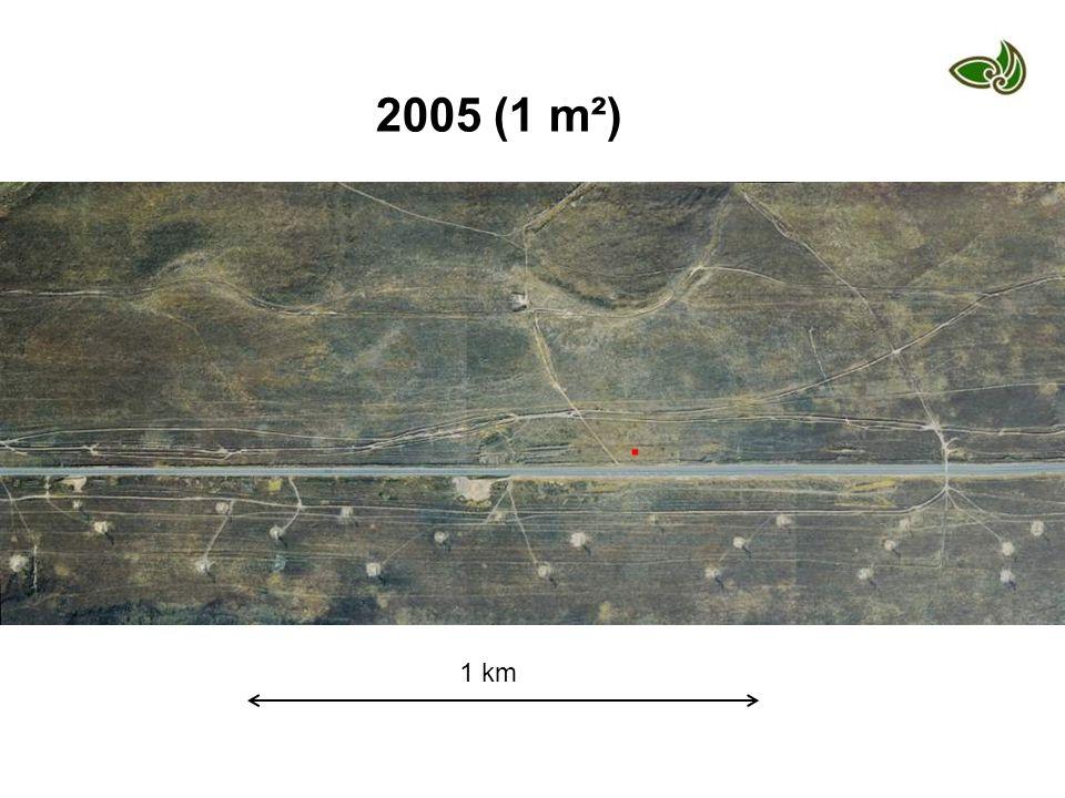 1 km. 2005 (1 m²)