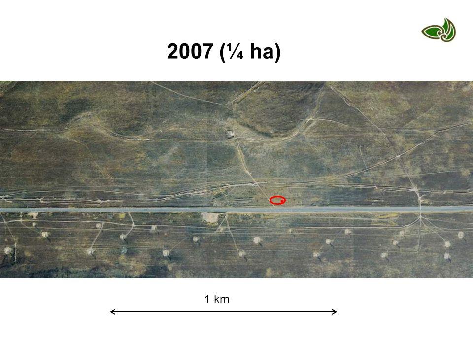 1 km 2007 (¼ ha).