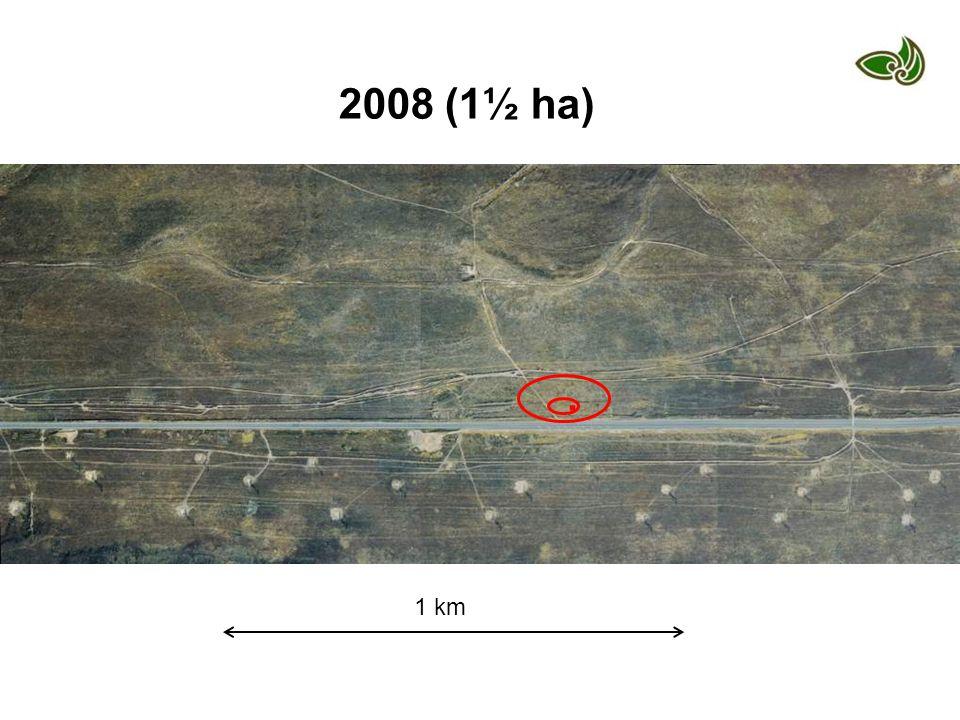 1 km 2008 (1½ ha).