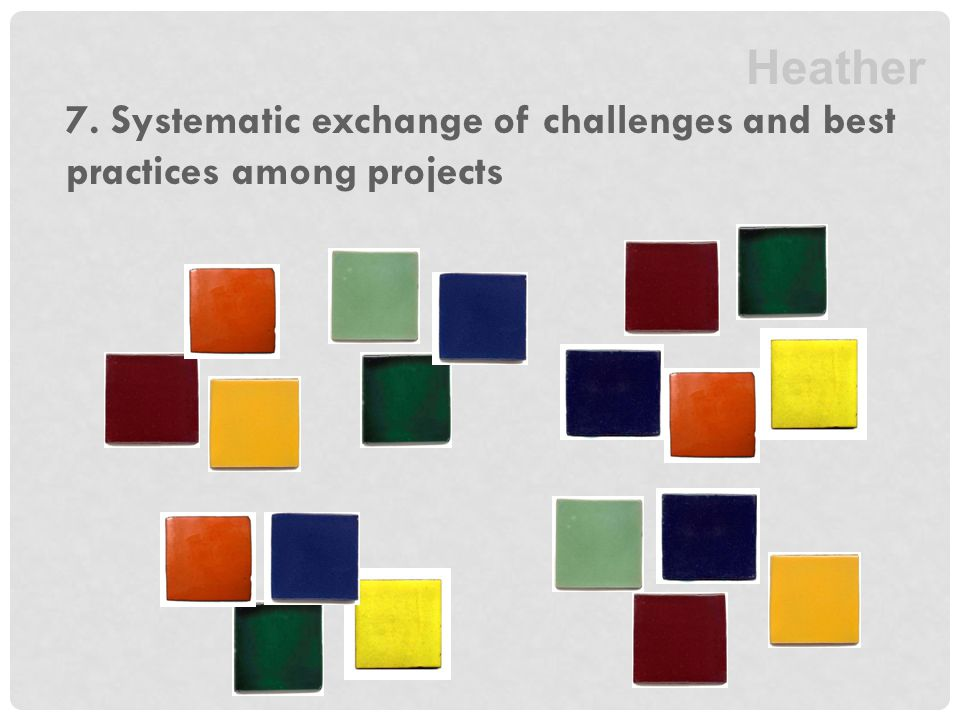 7. Systematic exchange of challenges and best practices among projects Heather