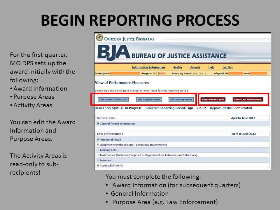 BEGIN REPORTING PROCESS For the first quarter, MO DPS sets up the award initially with the following: Award Information Purpose Areas Activity Areas Y