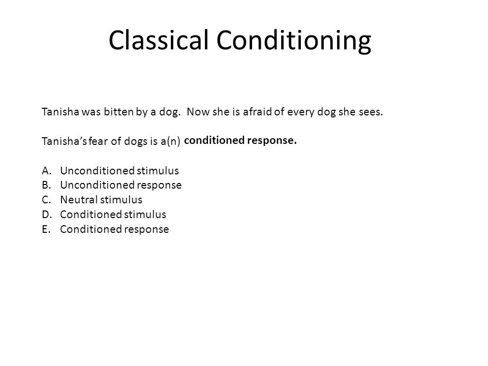 Classical Conditioning Tanisha was bitten by a dog. Now she is afraid of every dog she sees. Tanisha's fear of dogs is a(n) A.Unconditioned stimulus B