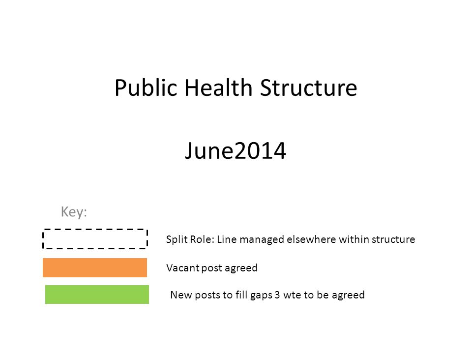 Public Health Structure June2014 Key: Split Role: Line managed elsewhere within structure Vacant post agreed New posts to fill gaps 3 wte to be agreed